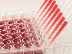 Pipettieren einer ELISA-Platte Copyright CANDOR Bioscience GmbH