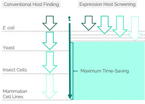 graphic of conventional host finding vs. protein expression host screening