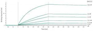 Biolayer interferometry binding analysis graph
